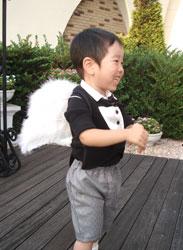 スタイ+天使の羽イメージ2